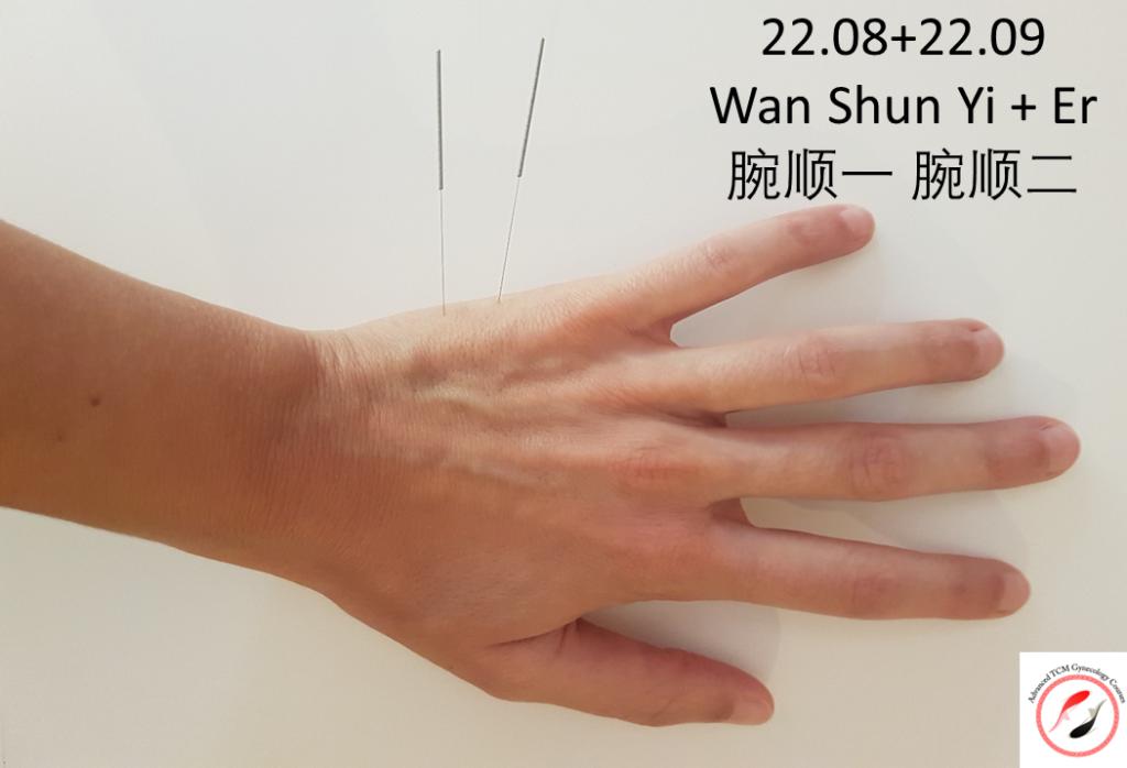 22.08+ 22.09 Wan Shun yi+ Wan Shun Er של מסטר דונג